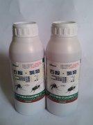 东莞蟑螂防治-右胺・氯菊